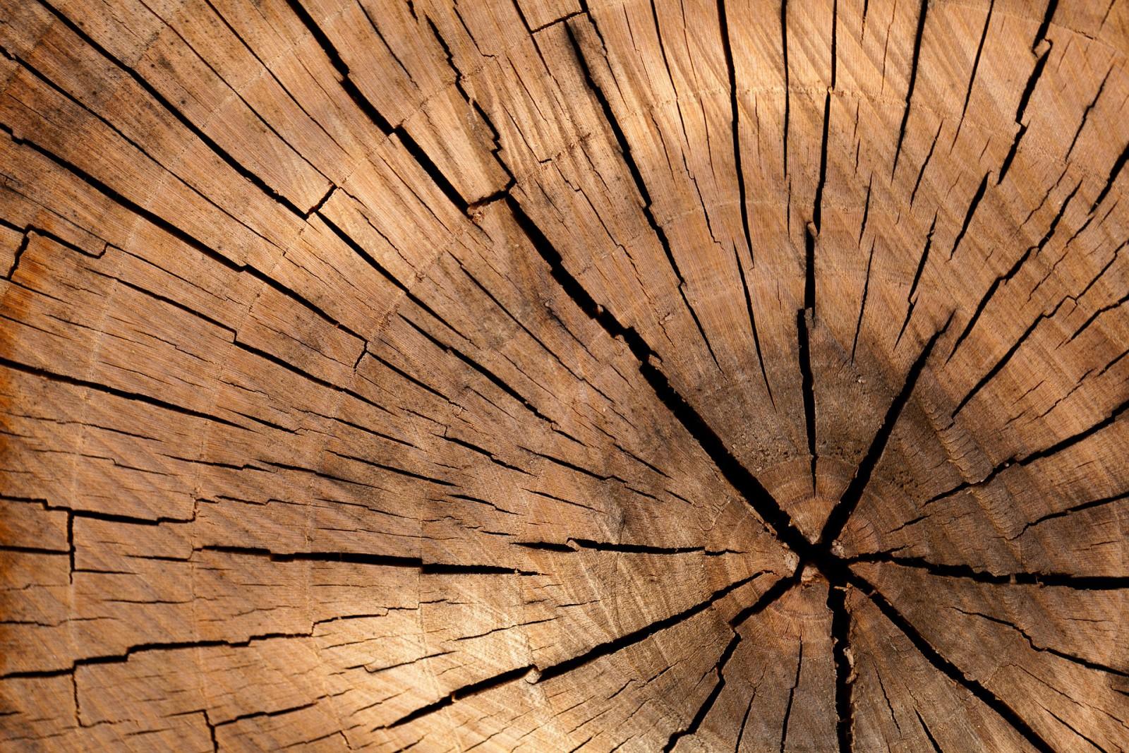Трещины в брусе - причины появления и способы устранения